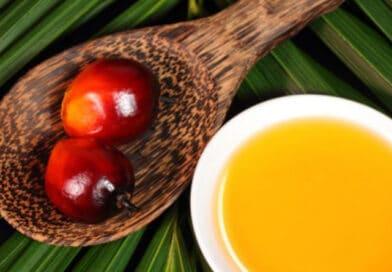 Palm Oil Buyers in USA